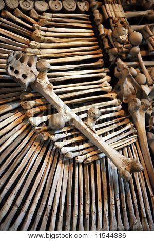 Human Bones On A Pile