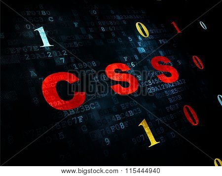 Software concept: Css on Digital background