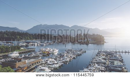 harbor with yachts in the morning
