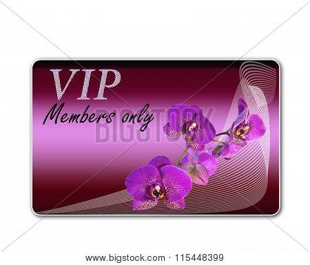 Club Card For Vip Clients