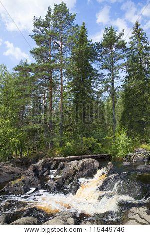 August on Ahvenkoski waterfall. Karelia