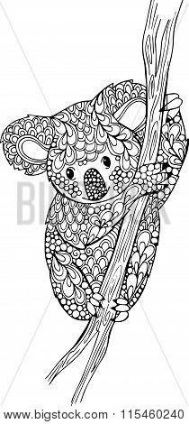 Hand drawn doodle koala illustration.