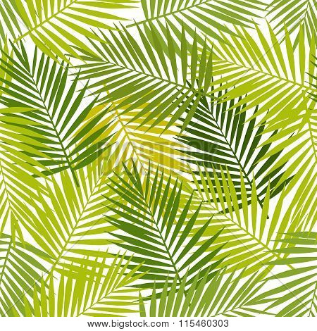 Palm leaf silhouettes seamless pattern. Vector illustration. Tropical leaves.