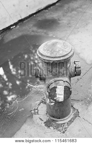 Black And White Abandoned Fire Hydrant