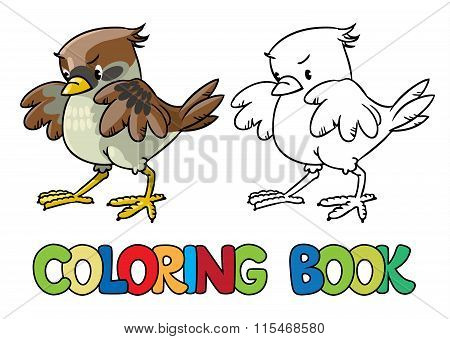 Brave Sparrow. Coloring Book