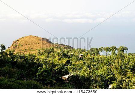 Lush Vegetation In Ribeira Filipe