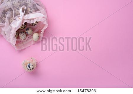 New born child, baby shower or pregnancy greeting card concept. Quail egg in a bird nest.
