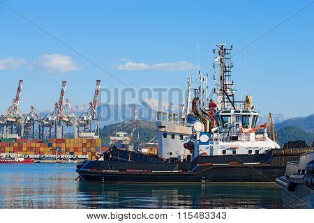 Harbor Of La Spezia - Liguria Italy