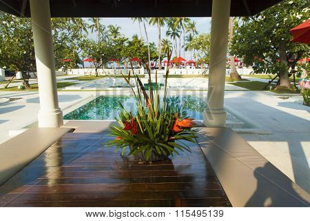Palm Trees At The Pool
