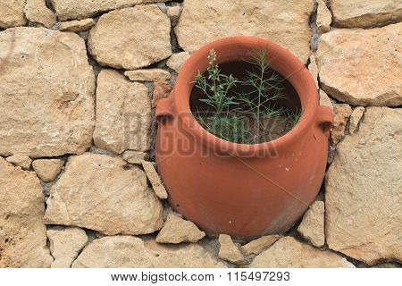 Clay Pot Flower In The Stone Wall. View From Above