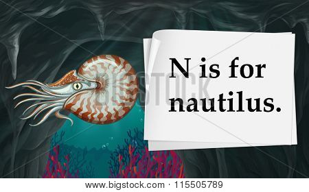 Letter N is for nautilus illustration