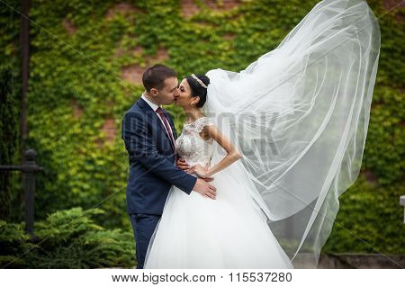 Newlywed Valentynes Hugging And Kissing In A Park Vines Background Wind Blowing The Veil