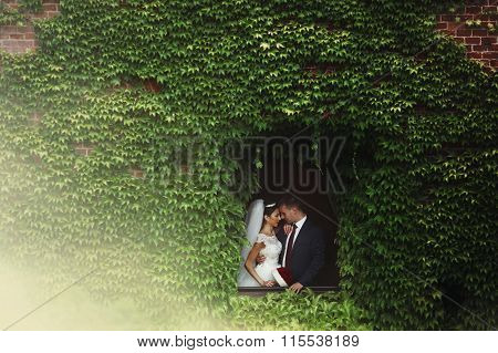 Fairytale Newlywed Romantic Couple Of Valentynes Kissing In A N Old Castle Window Surrounded By Vine