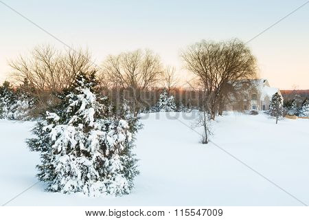 Deep Snow In Drifts Cover Fir Tree