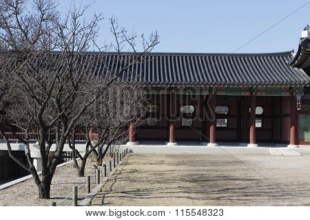 Gyeongbok Palace With Dry Tree In Winter Korea