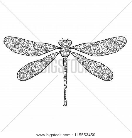 Vector illustration of dragonfly isolated on white