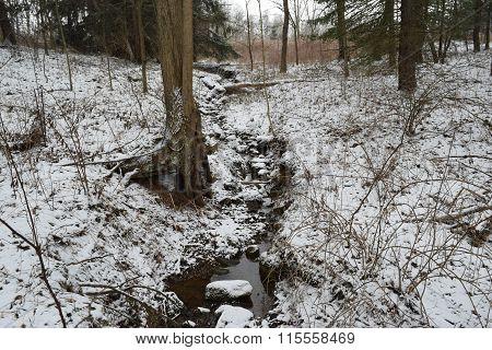a small stream of water running thru a winter forest