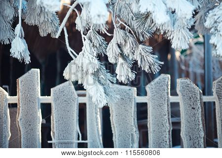 Wooden fence under frost