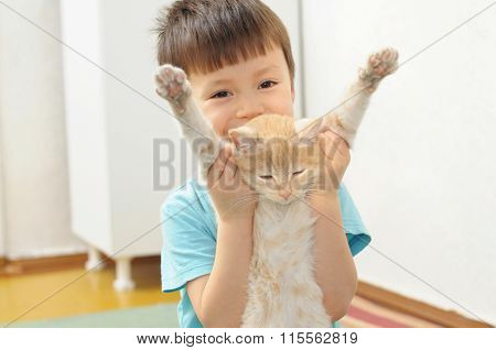Boy Playing With Lazy Ginger Cat