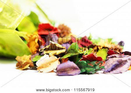 Aroma dried flower white background