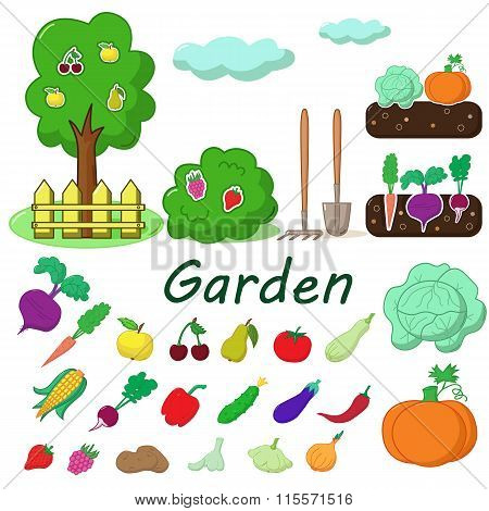 Garden With Fruits And Vegetables