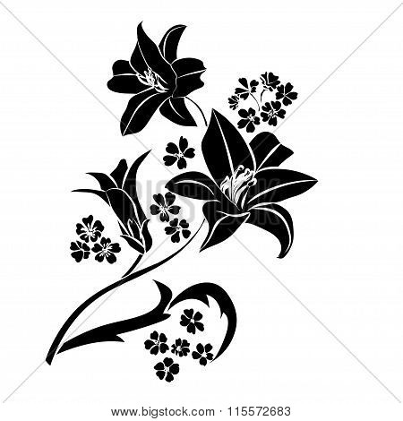 Black Silhouette Lily.