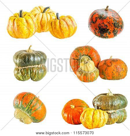 Collection Of Decorative Gourds On A White Background
