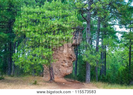 Rock Formation Similar To Man Face In Enchanted City, Cuenca, Spain