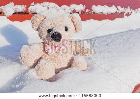 Dear friend teddy bear