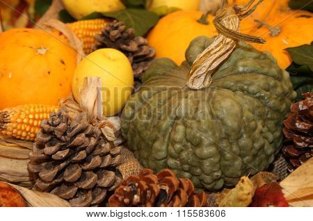 Pumpkin And Corn And Other Fresh Fruits In Autumn