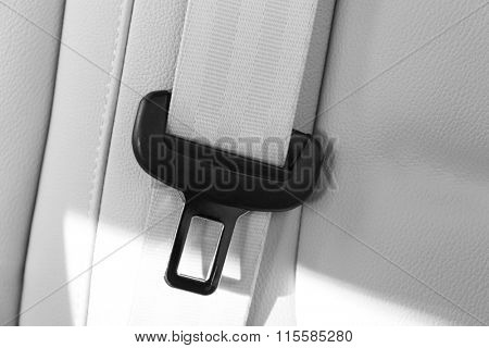 Seat belt on leather chair