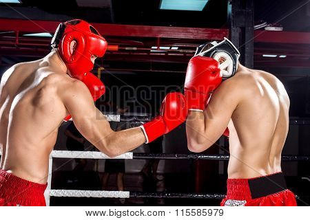 Cheerful two young fighters on the ring