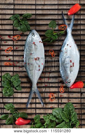 Raw Bigeye Trevally Fish