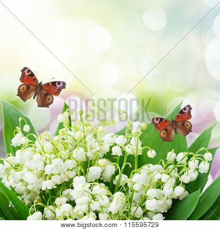Bunch of Lilly of valley