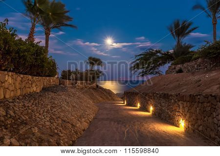 Evening view for small road and moonlit path on sea