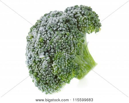 Frozen Broccoli With Ice Crystals On White Background
