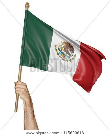 Hand proudly waving the national flag of Mexico