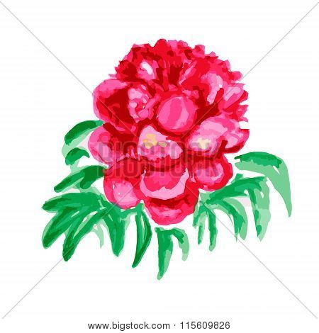 Blooming Pink Peony