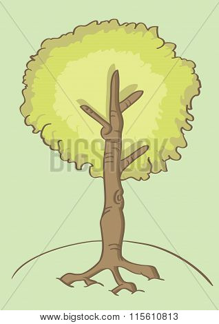Cartoon Tree Vector Illustration