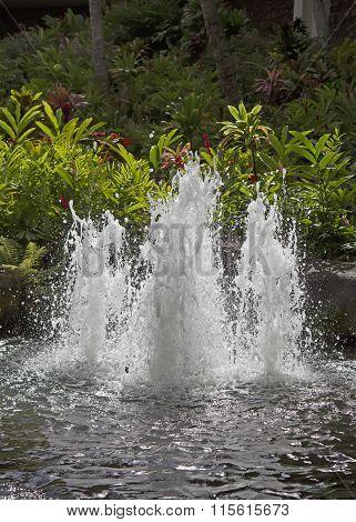 Fountain In Tropical Garden