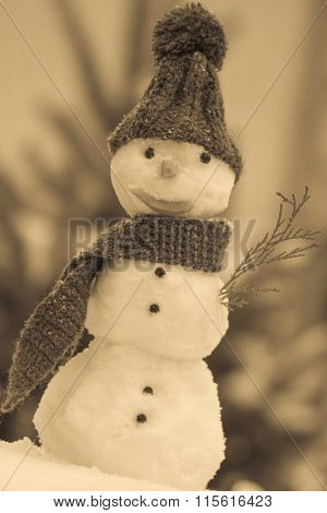 Snowman Wrapped Scarf With Woolen Cap, Winter Time, Seasonal Concept
