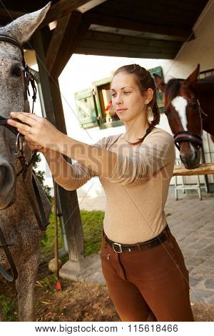 Young woman harnessing grey horse.