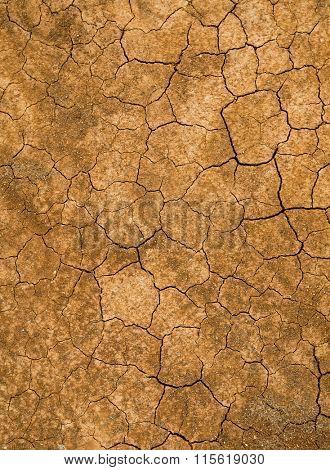 Cracked of mud