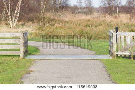 Cattle Grid, Netherlands