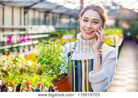 Beautiful smiling young woman gardener in striped apron talking on mobile phone and holding small plant in pot in orangery