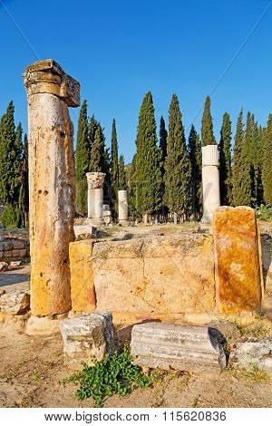 History Pamukkale    Old  Asia Turkey The Column  And