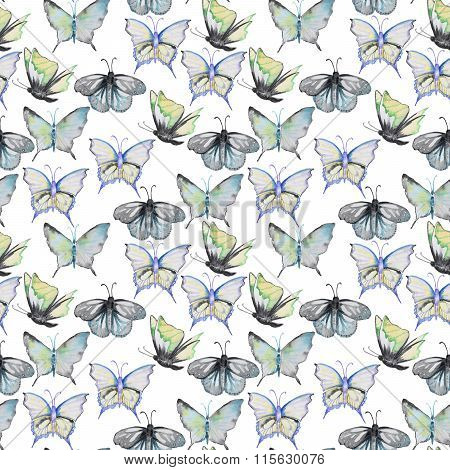 Watercolor pattern with batterfly
