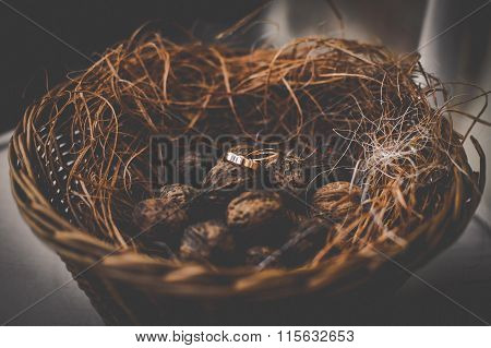 Two Luxury Golden Wedding Rings In Rustic Basket With Dry Grass And Chestnuts Closeup
