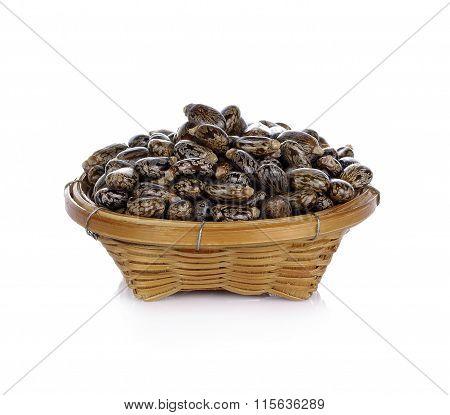 Castor Oil Seeds - Ricinus Communis On White Background