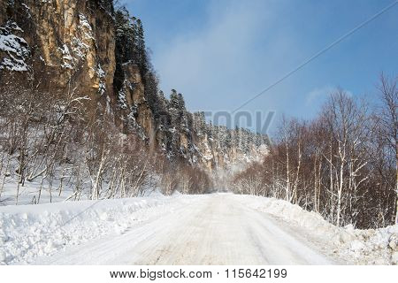 Winter forest in mountain